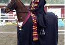 Gryffindor häst