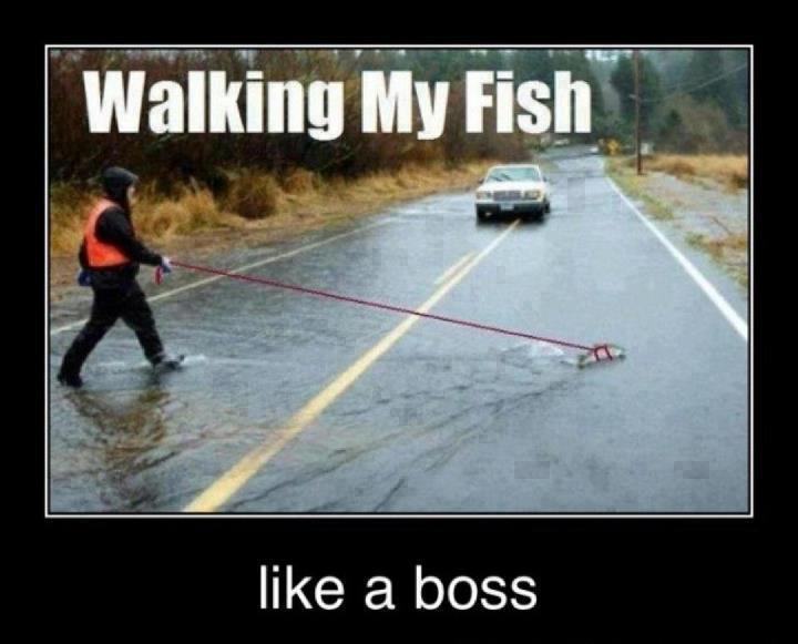 Ute och går med fisken sin