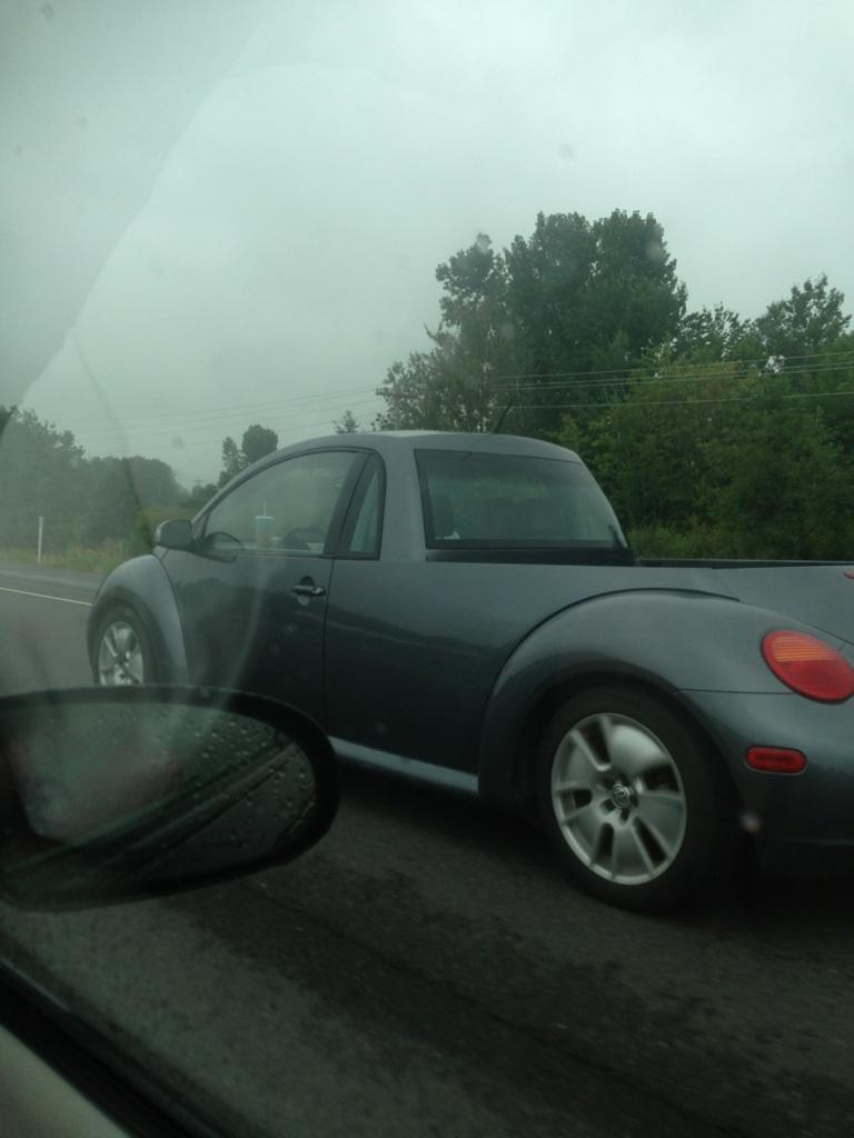 Bug pickup