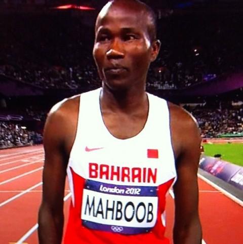 Mahbob