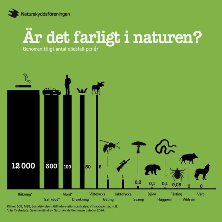 Farligt i naturen?