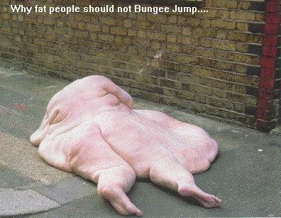 Varför feta inte ska hoppa bungyjump