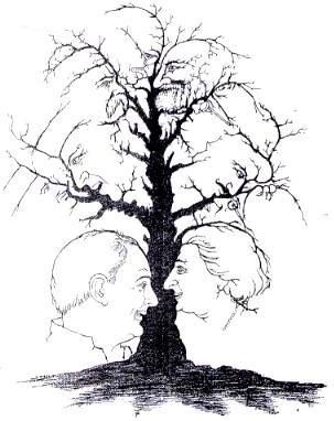 Hur många ansikten hittar du?