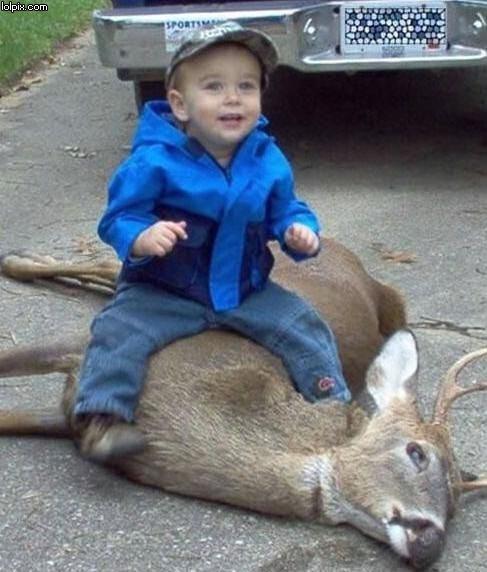 Glad unge rider roadkill