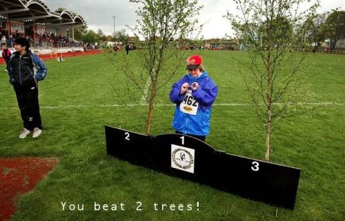 Grattis, du slog två träd