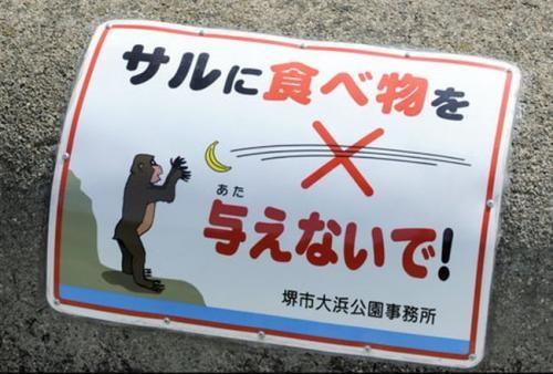 Mata inte aporna