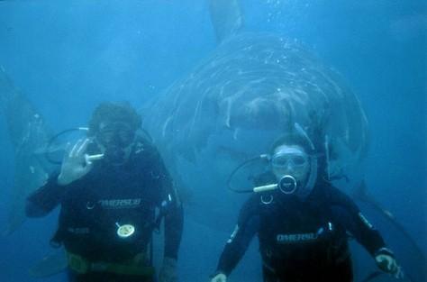 Kul under vattnet