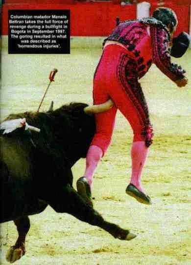 Matador får lite ont i anus