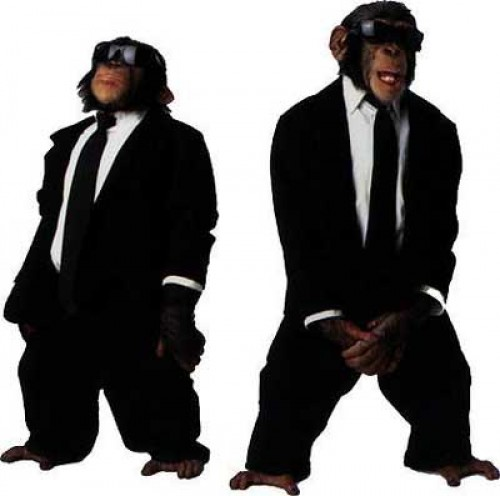 Monkey Bodyguards