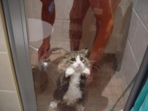 Jag vill inte duscha