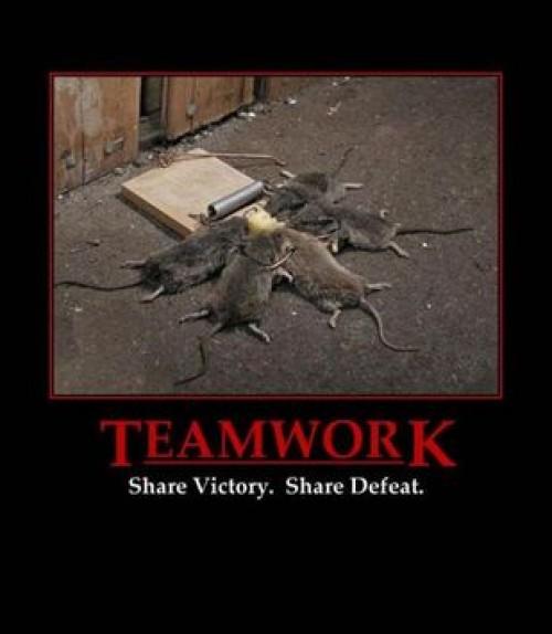Teamwork med möss