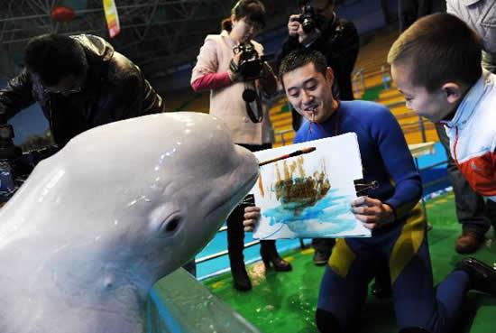 Delfin som kan måla
